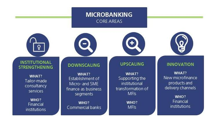 Our four core areas of expertise within the Microbanking Competence Centre