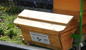 "Digitaler Bienenstock des Forschungsprojektes ""we4bee"" am FS-Campus"
